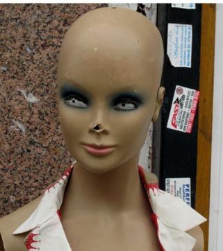 peck_nosemodel_72